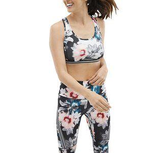 Xersion Move sports bra bundle XXL